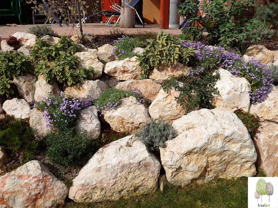 Egy éves sziklakert Érd, kora tavasszal, lila virágokkal