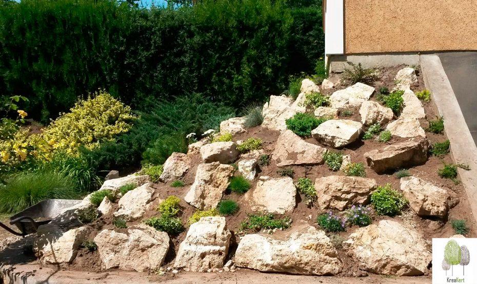 Sziklakerti növények betelepítése